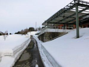 3.15雪⑤