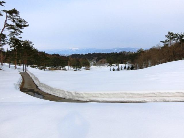 3.15雪⑥