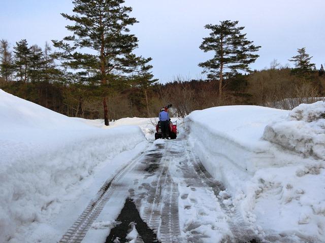 3.15雪②