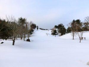 3.15雪④